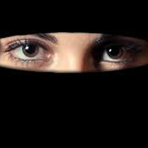 Proposed ban on face veils undermines Norway's free speech ranking