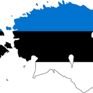 Fears of increased smear campaign against civil society in Estonia as elections approach