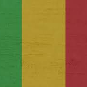 Three journalists arrested in Mali on dubious allegations then later released
