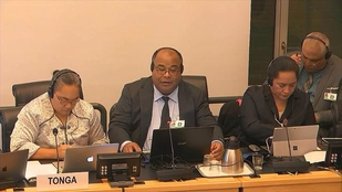 UN rights committee questions Tonga on freedom of expression for children