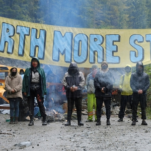 Canada: Environmental defenders face arrests and excessive force in Fairy Creek blockades