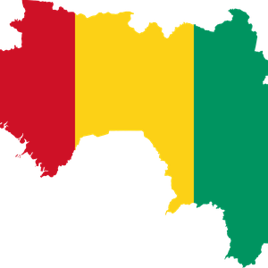 Recent protests turn violent in Guinea