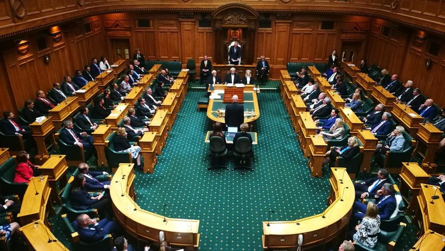 Terrorism law bulldozed through NZ parliament despite human rights concerns
