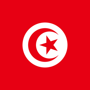 Tunisian critics and investigative journalists face intimidation and harassment