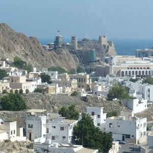 Omani authorities target bloggers and journalists