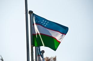 Uzbekistan: Reforming or Redecorating?