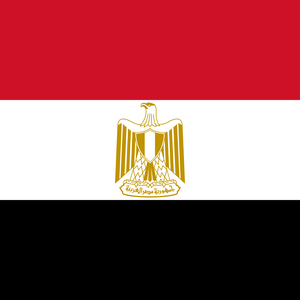 Egyptian authorities forcibly shut down NGO supporting victims of torture and violence